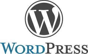 WordPress ondersteuning